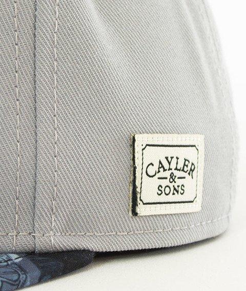 Cayler & Sons-Make It Rain Cap Snapback Grey