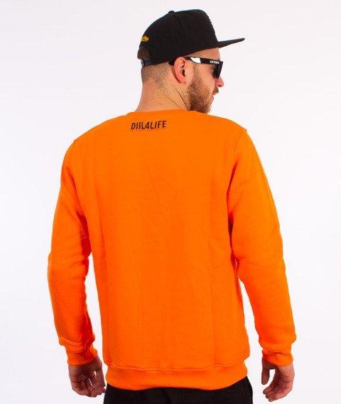 DIIL-Harvard Bluza Pomarańczowa