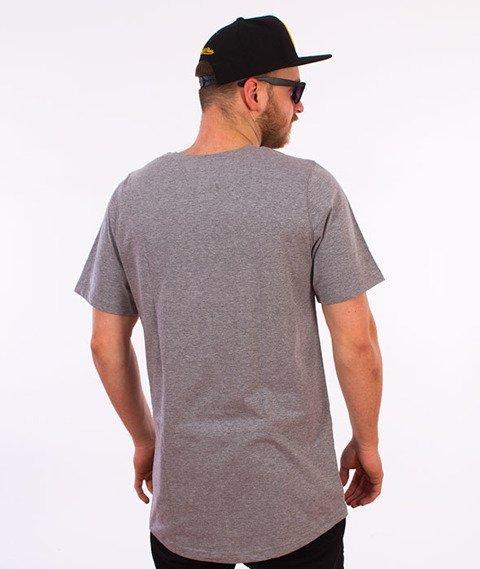 Intruz-Logo T-Shirt Szary